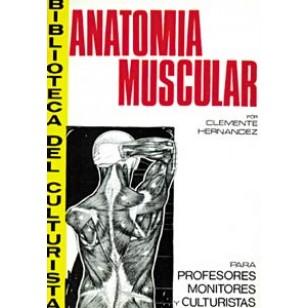 Anatomía Muscular. Para profesores, monitores y culturistas
