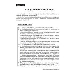 Enciclopedia del Aikido. Tomo VI