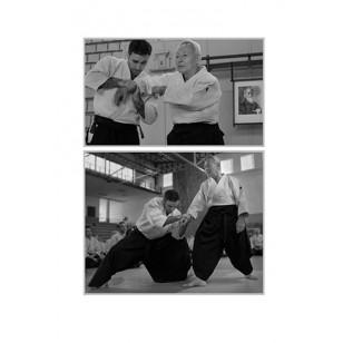 Vibración y Conexión (El Aikido que yo busco)